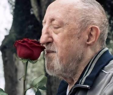 Chi salvera le rose