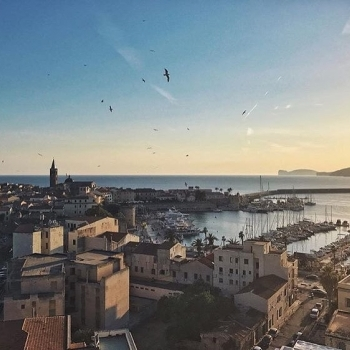 Alghero from above