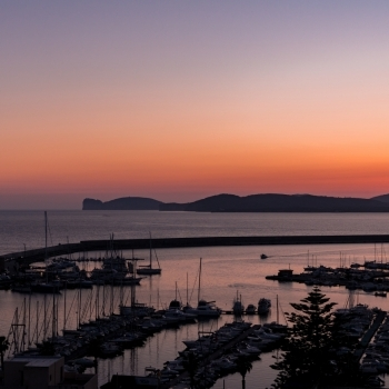 Sunset lights on the harbor
